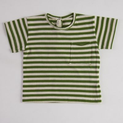 Baby Jersey T-Shirt Green/Ecru Stripes by Babe & Tess-3M