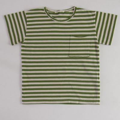 Jersey T-Shirt Green/Ecru Stripes by Babe & Tess-4Y