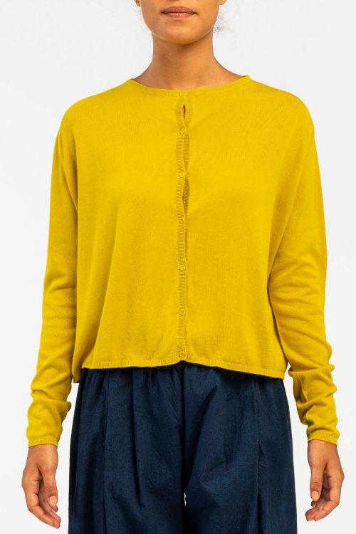 Cotton and Cashmere Cardigan Lemon by ApuntoB